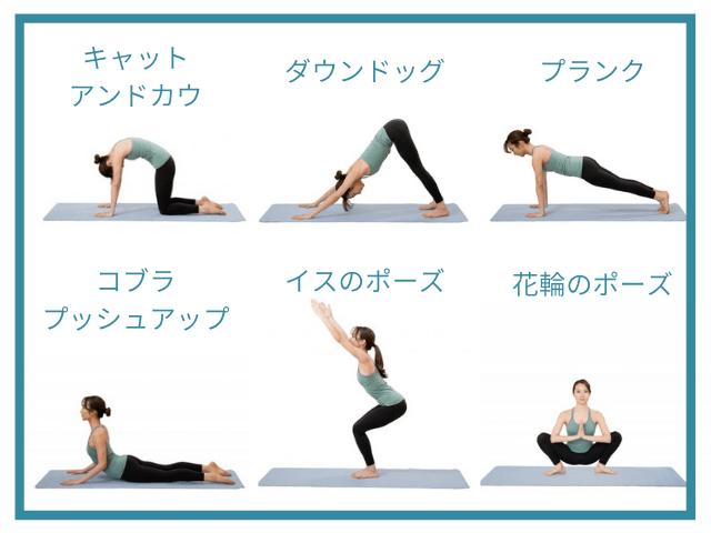 鶴のポーズに効果的な練習ポーズ6つ
